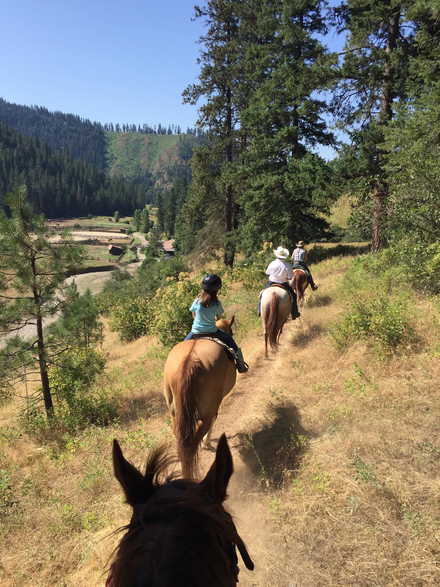 Group on horseback trail ride near ranch.