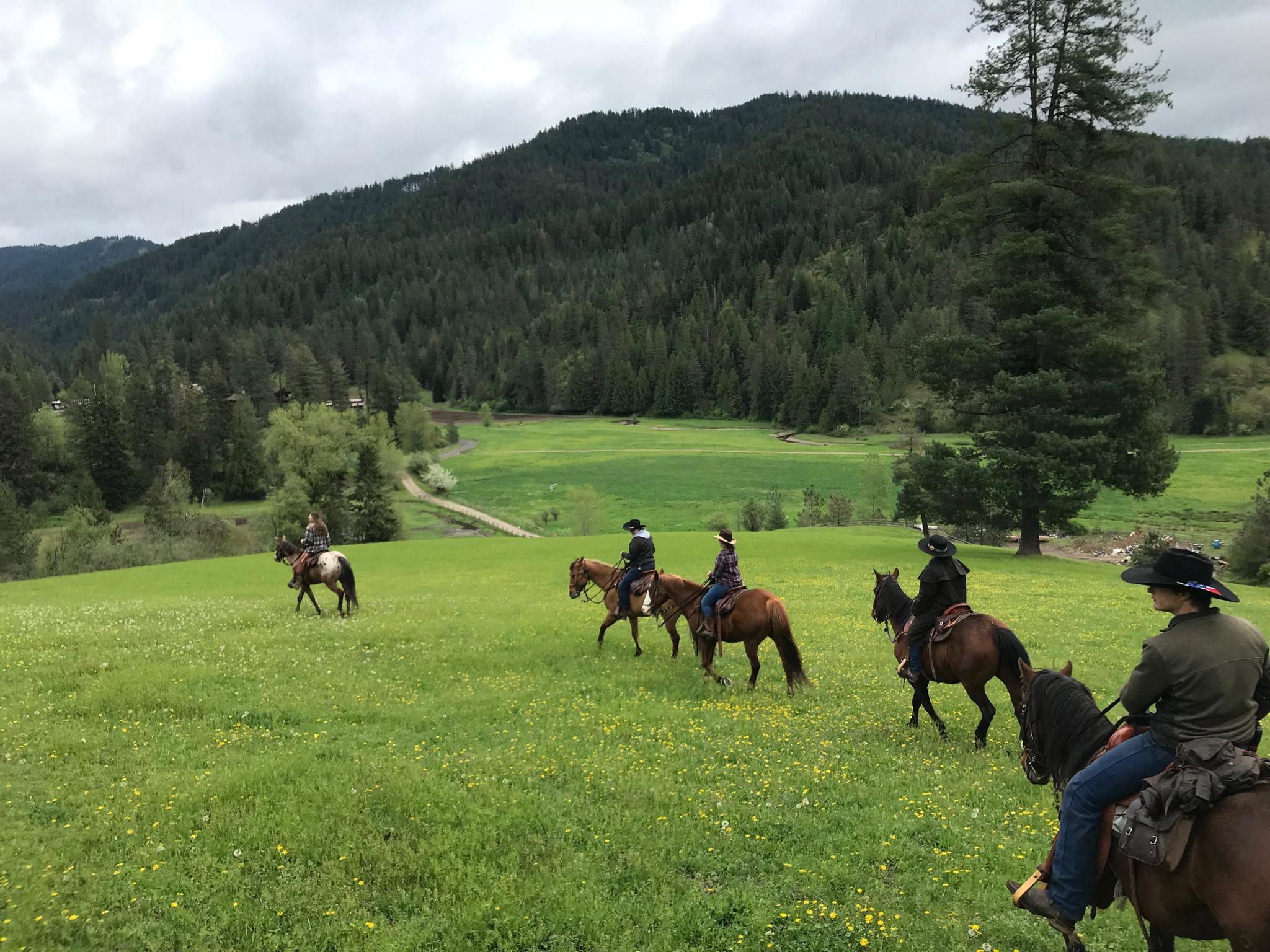 Group in a field on horseback.