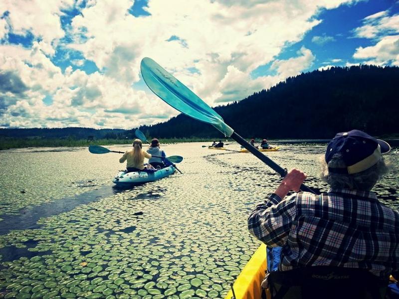 Group in tandem kayaks.