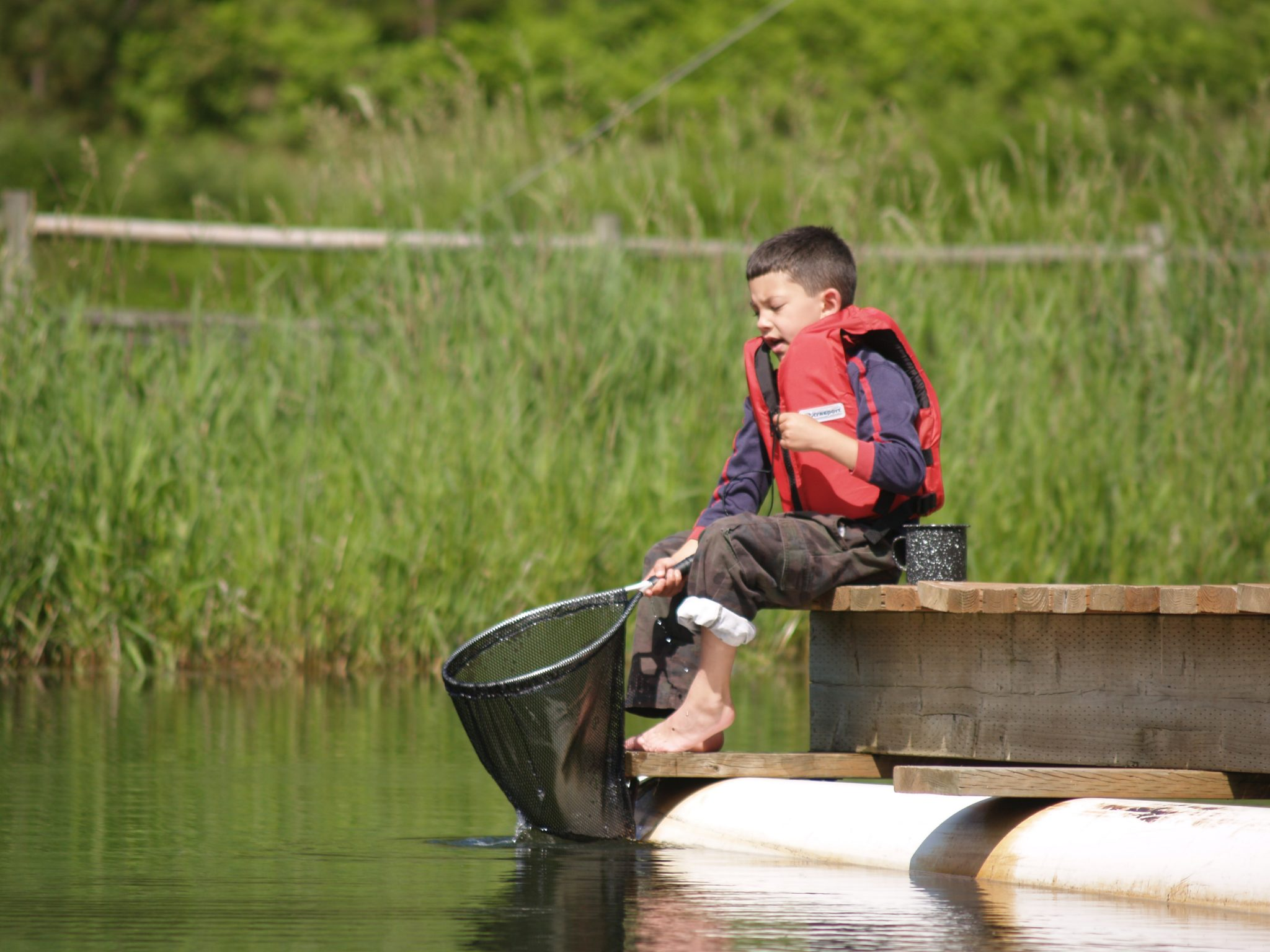 Young boy on dock with a fishing net.