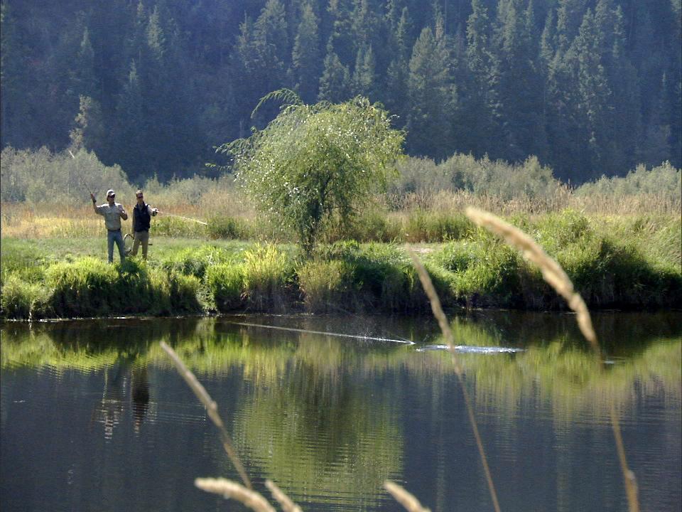 Men skipping rocks on the pond.